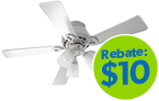 ENERGY STAR® Ceiling Fans with Lights